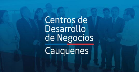 Vicerrectoria_UCM_Centro_Cauquenes