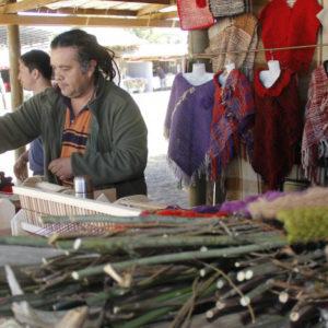 DESARROLLAN INVESTIGACIÓN ACCIÓN PARTICIPATIVA SOBRE LA GESTIÓN DE BIENES COMUNES EN EL CENTRO Y SUR CHILE