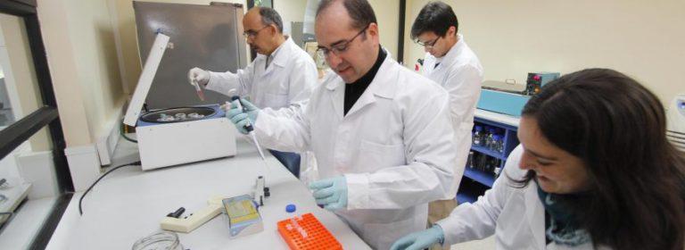 UCM-avanzo-33-puestos-en-prestigioso-ranking-de-investigacion-cientifica1